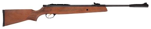 accurate air rifle