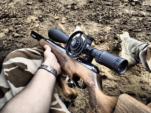 best 22 air rifle