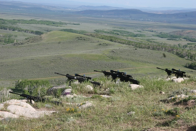 308 rifles
