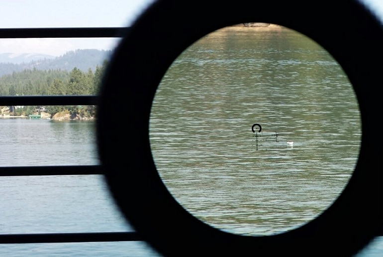 rim fire rifle scope