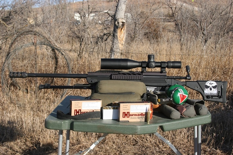 best 300 win mag rifle for the money