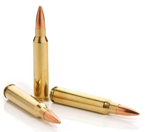5.56/223 bullet