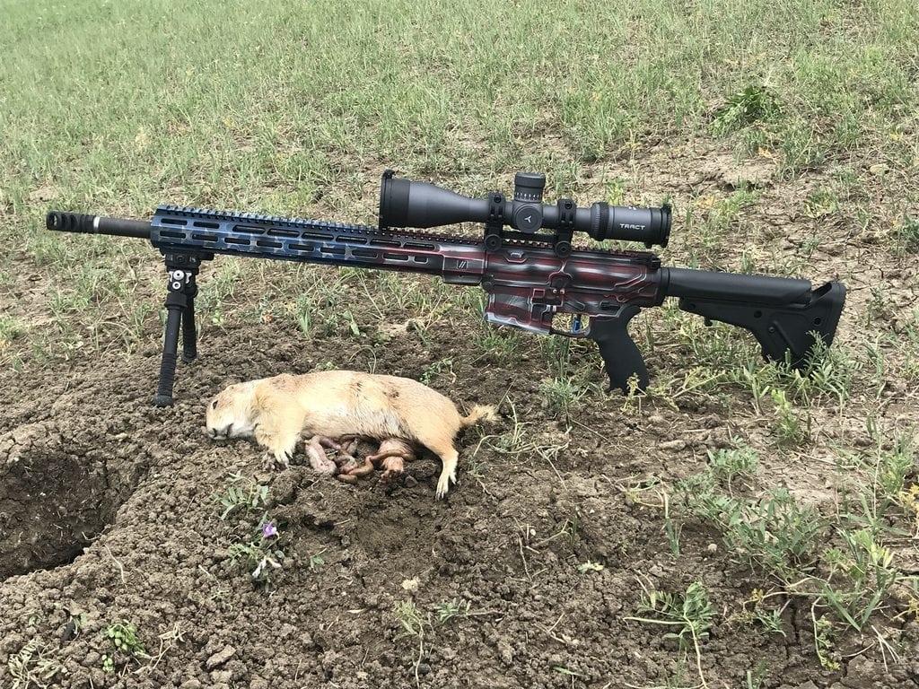ar 15 huntng scope