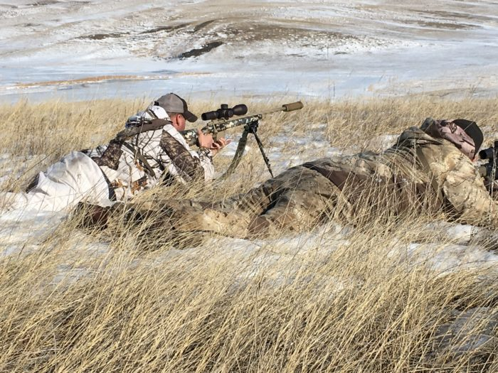 Vortex builds scopes for this type of work. Coyote hunters out of Fur Quest, South Dakota sight and range a coyote at 800 yards.