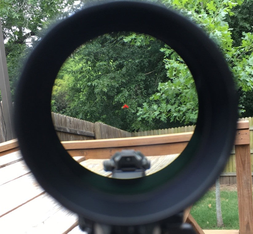 scope reviews