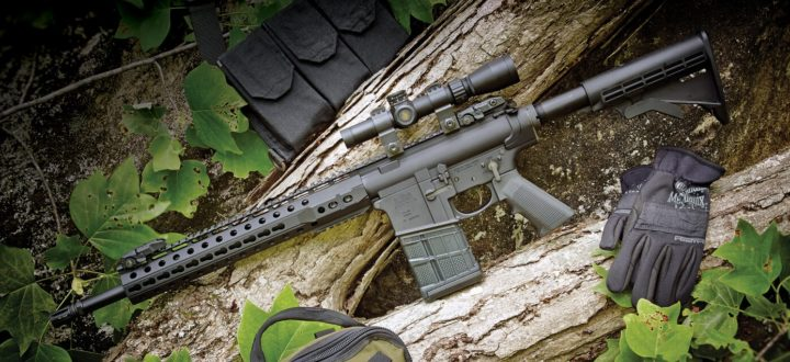 ar10 for hunting