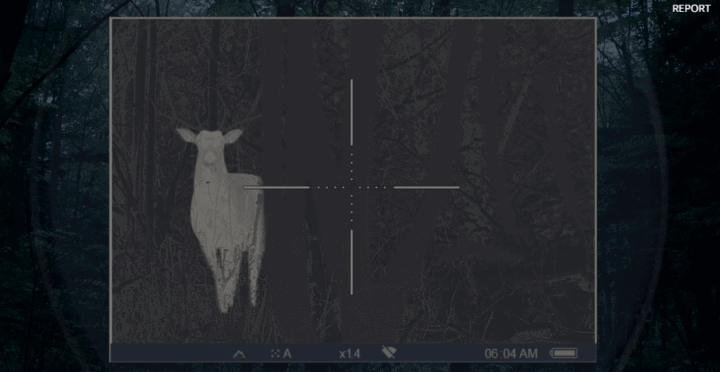 best coyote scope