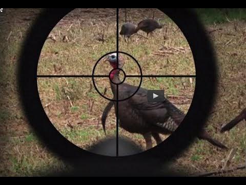 shotgun scopes for deer hunting