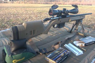 best 308 battle rifle