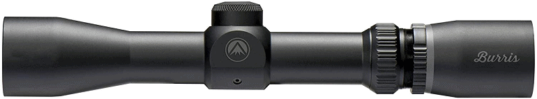 ruger scout rifle scope