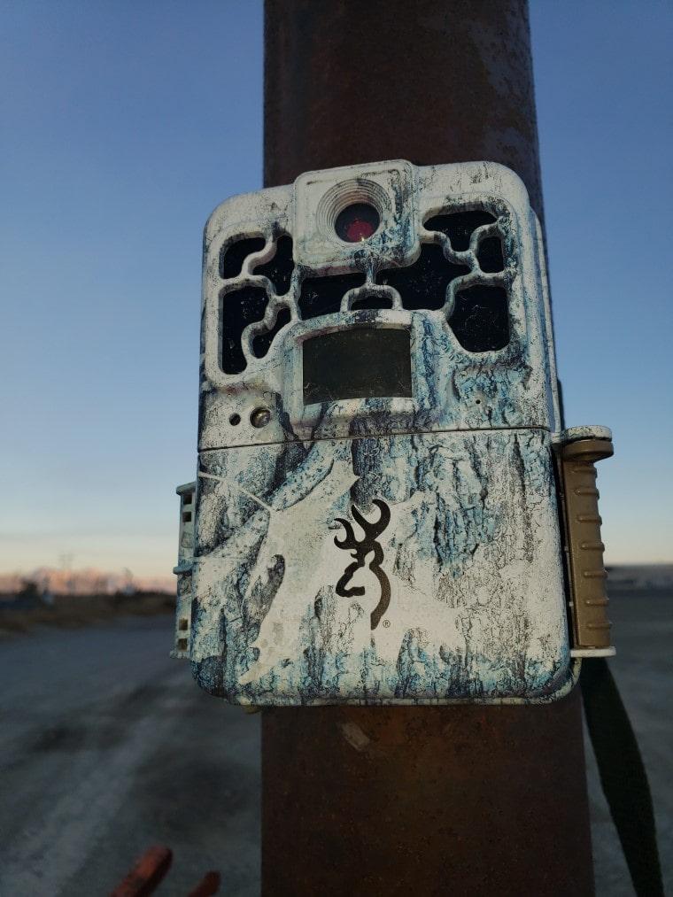 big game trail camera
