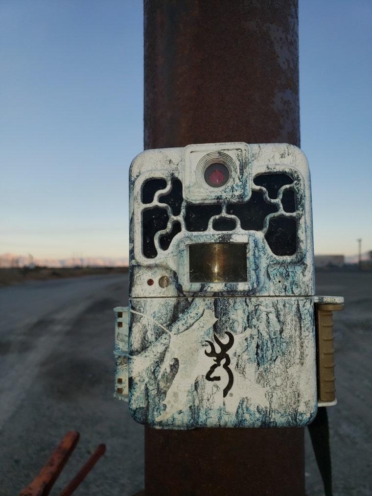 big game trail cameras