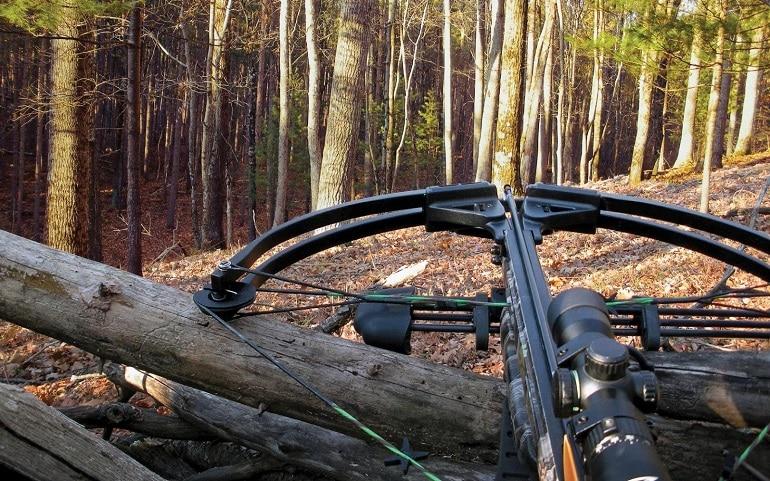 illuminated crossbow scopes